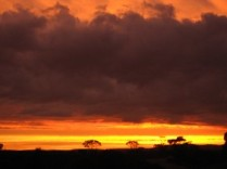Sunset at Bundey Bore Station